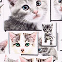 Cotton Kitty 2