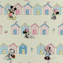 Mickey Mouse & Family 1