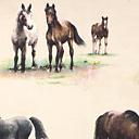 Pradera de caballos