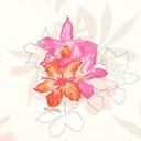 Satén de algodón Hibiscus